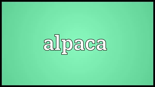 Watch Alpaca Meaning GIF on Gfycat. Discover more alpaca, alpaca definition, alpaca meaning, alpaca pronunciation, definition, pronunciation GIFs on Gfycat