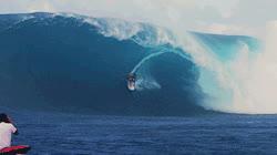 surfing surfer inside out koa smith gifs insideout gids koa gifs koa GIFs