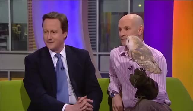 Watch this trending GIF on Gfycat. Discover more david cameron GIFs on Gfycat
