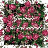 Watch and share Gratitude GIFs on Gfycat