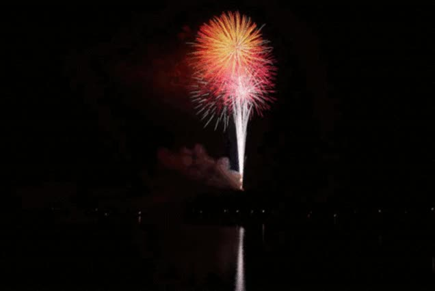 Watch fireworks GIF on Gfycat. Discover more related GIFs on Gfycat