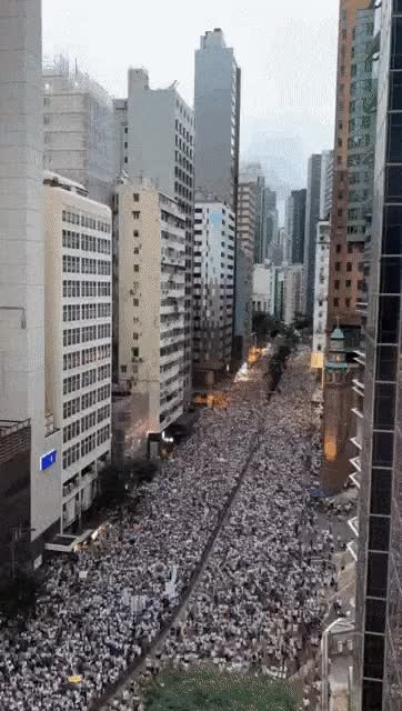 Watch and share Hong Kong GIFs by Vinegret on Gfycat