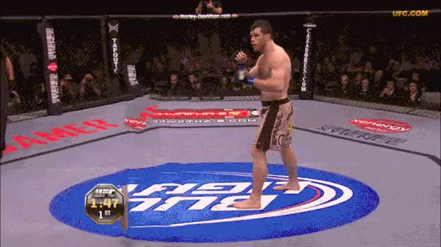 Watch Silva GIF on Gfycat. Discover more related GIFs on Gfycat