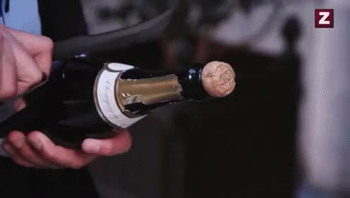 Watch and share Champagne GIFs on Gfycat