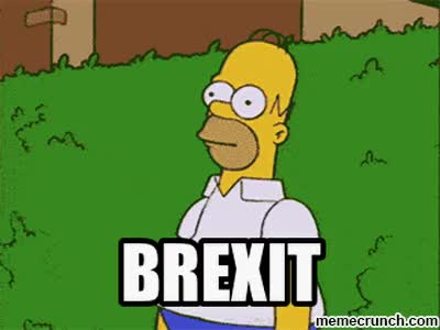 Watch this brexit GIF on Gfycat. Discover more brexit, meme GIFs on Gfycat