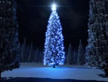 Watch and share Christmas Tree Light House GIFs on Gfycat