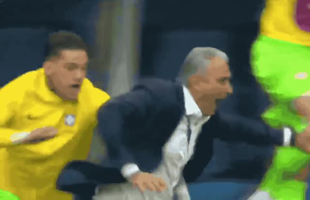 Watch this curated GIF by ioanna on Gfycat. Discover more 2018, accident, brazil, coach, cup, down, drunk, epic, excited, fall, fifa, floor, funny, lol, omg, oops, out, tite, watch, world GIFs on Gfycat