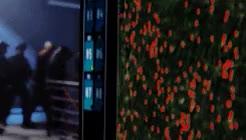 Wayward Pines (1.10) and World War Z (2013) parallels