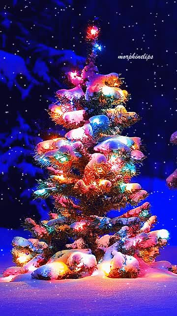 Watch and share Christmas Tree Animated GIFs on Gfycat