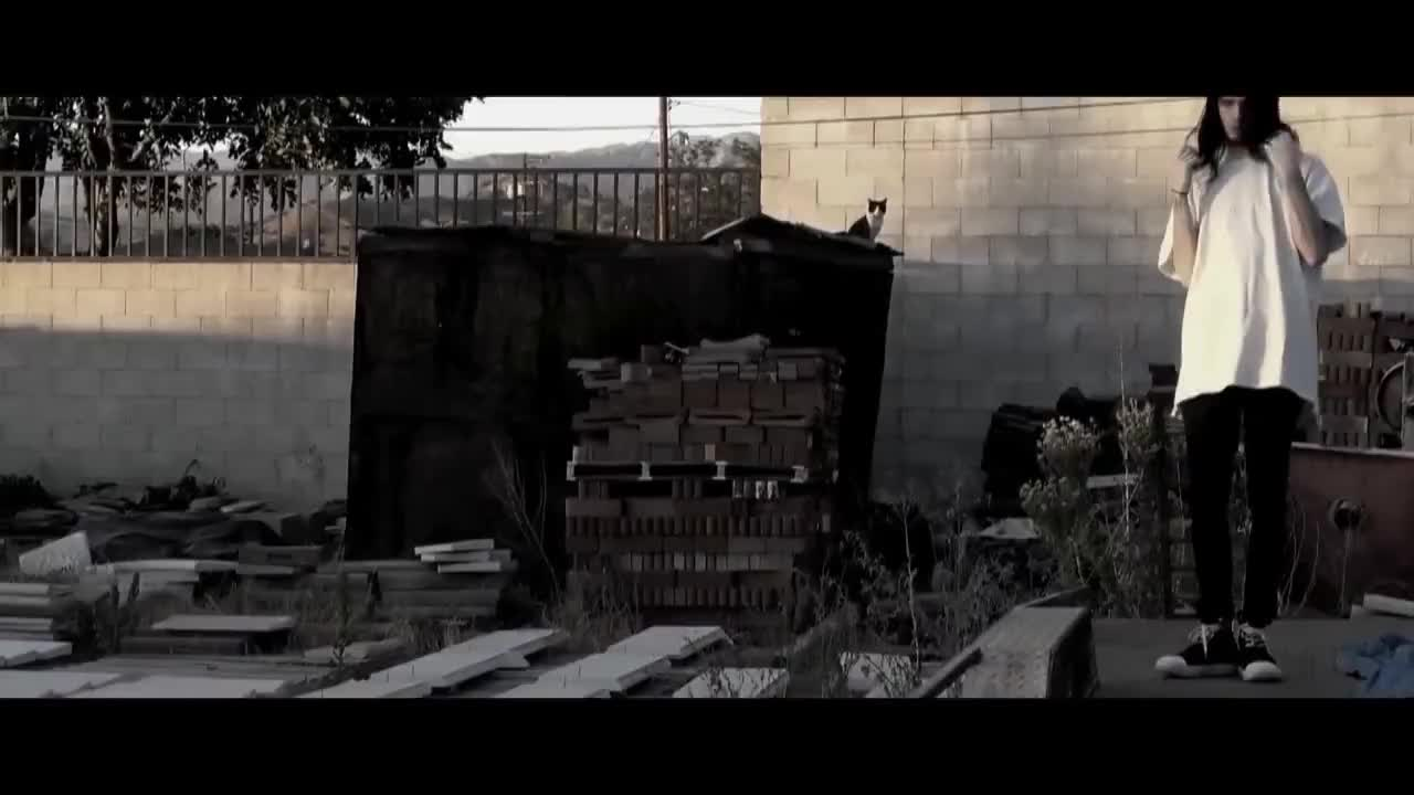 TEAMSESH, bones, paidprogramming2, Bones - BlackMold GIFs