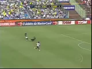 Watch and share Palmeiras GIFs and Verdão GIFs on Gfycat