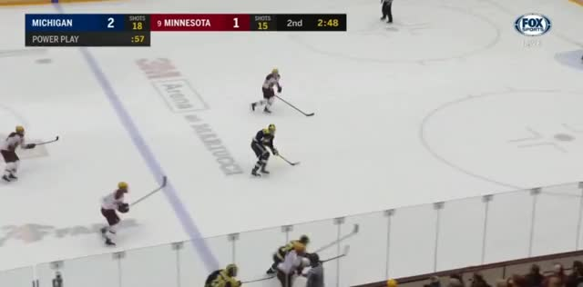 Watch and share Mich At Minn Sat 4 GIFs by aschnepp on Gfycat