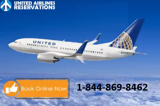 Watch and share United Airlines Offer GIFs on Gfycat