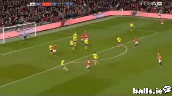 Watch and share Hernandez GIFs by pjbrowne on Gfycat