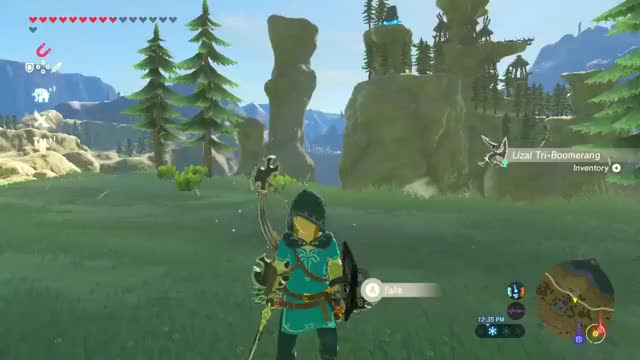 Watch and share Botw Magnesis Boomerang Trick.webm GIFs on Gfycat