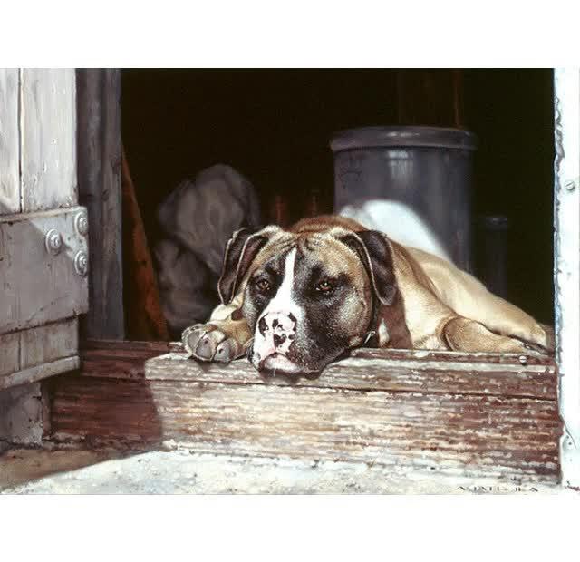 Watch and share Pet Portrait Artist GIFs by Amatrula Portraits on Gfycat