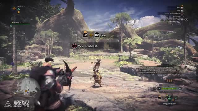 Watch and share Monster Hunter GIFs and Light Bowgun GIFs on Gfycat