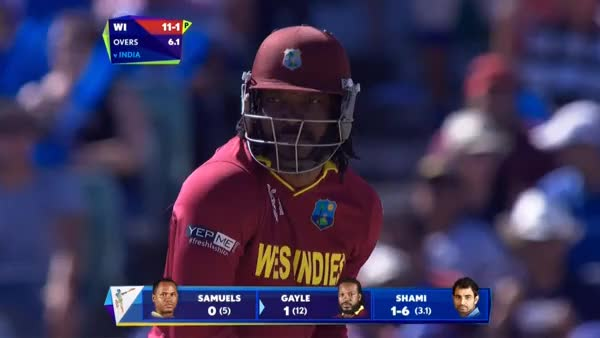 Watch and share Cricket GIFs by poochi on Gfycat