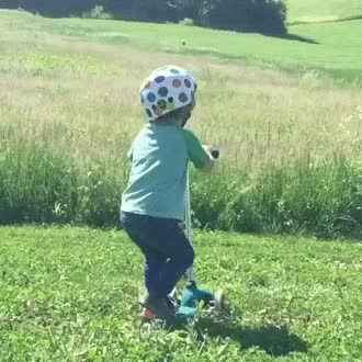 Watch and share Scooter GIFs on Gfycat