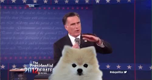 Watch this trending GIF on Gfycat. Discover more mitt romney GIFs on Gfycat