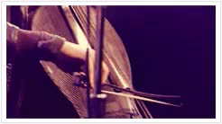 Watch passenger GIF on Gfycat. Discover more brent kutzle, ngif, onerepublic, other GIFs on Gfycat