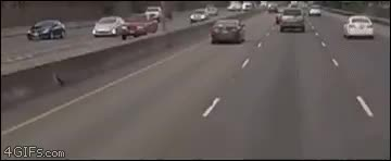 I guess im carpooling to work now • r/thisismylifenow GIFs
