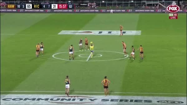 Watch Hawthorn charge GIF by @crouchingcody on Gfycat. Discover more related GIFs on Gfycat