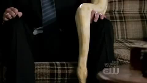 Watch dean winchester vs snake GIF on Gfycat. Discover more related GIFs on Gfycat