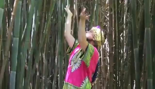Big Money Salvia (Official Music Video) GIFs