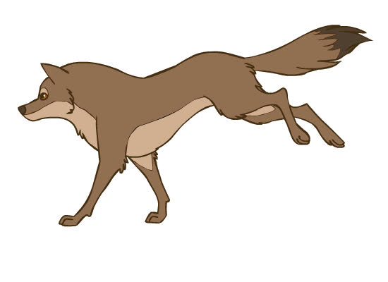 Coyote Run Cycle by wingedwolf94 GIFs