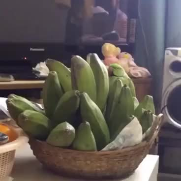 Watch That ain't no banana GIF on Gfycat. Discover more related GIFs on Gfycat