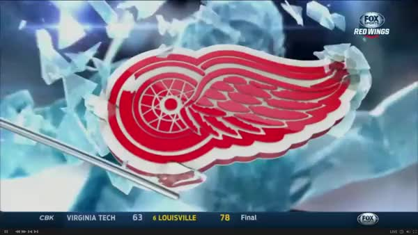 Watch this GIF on Gfycat. Discover more detroitredwings GIFs on Gfycat