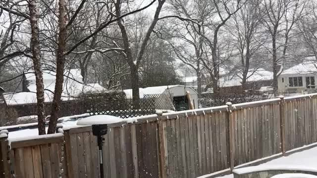 Watch and share Snow GIFs by mike_do on Gfycat