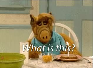 Watch this alf GIF on Gfycat. Discover more related GIFs on Gfycat