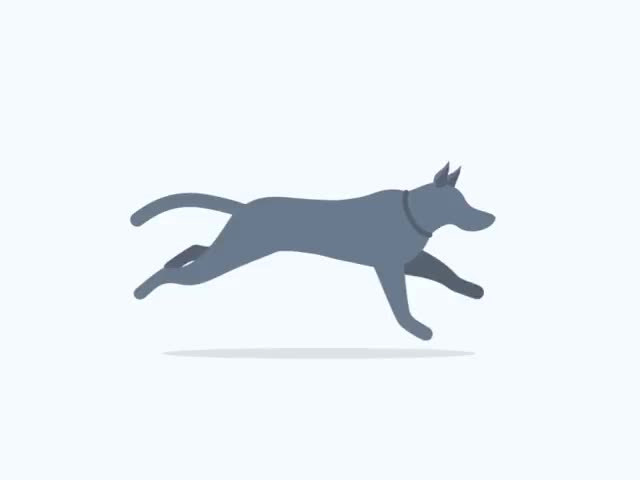 Watch and share 2D Run Cycle Created In After Effects. GIFs on Gfycat