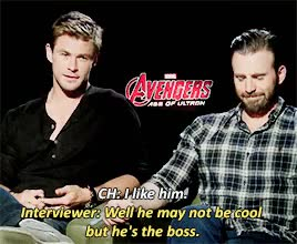 Watch this trending GIF on Gfycat. Discover more aou press, beard, chris evans, chris hems u can stay, chris hemsworth, chris pls everyone would be thrilled to date steve, evansedit, hemsworthedit, im gonna fight u chrisevans, marvelcastedit, myedit GIFs on Gfycat