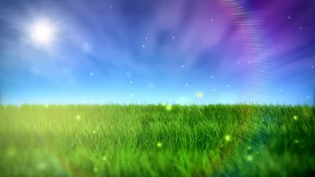 Watch and share Free Nature Video BackGround - HD GIFs on Gfycat