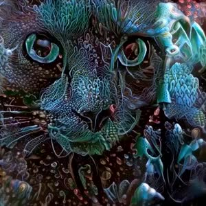 Watch and share Cat-lsd-loop GIFs by shermanikk on Gfycat