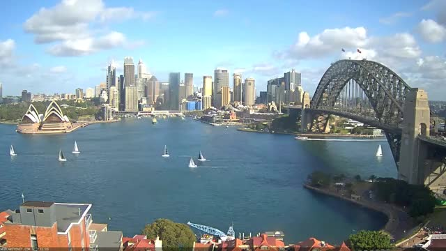 Watch and share Sydney Harbour GIFs on Gfycat