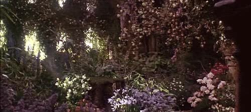 Watch and share Garden GIFs on Gfycat