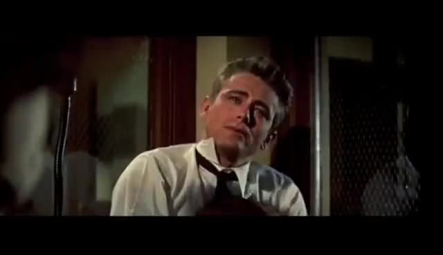 rebel without a cause, REBEL GIFs