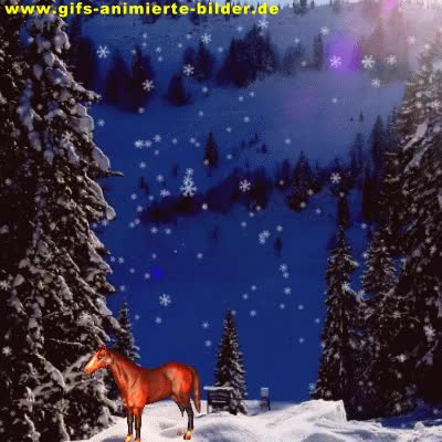 Watch and share Animiertes Pferd Berge Und Schneefall Gif Bild Amimiert GIFs on Gfycat