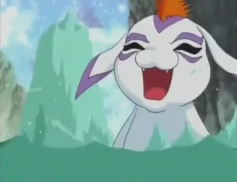 Watch YELL GIF on Gfycat. Discover more digimon, gomamon GIFs on Gfycat