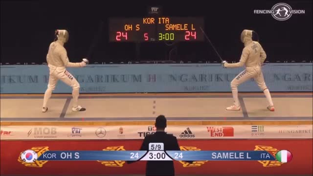Watch and share Fencing GIFs and Attack GIFs by vikingbiochemist on Gfycat