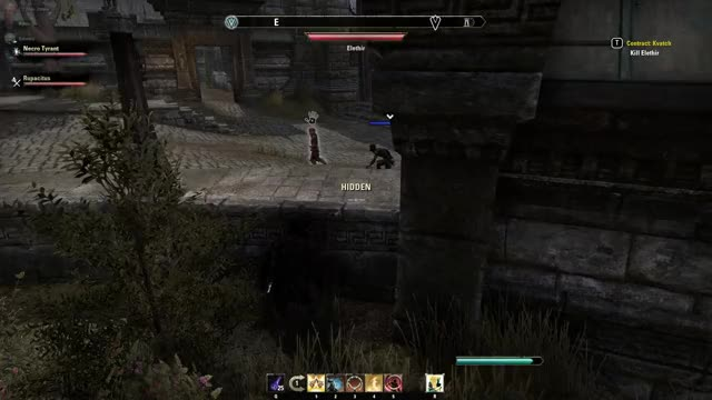 Watch and share ESO Dark Brotherhood GIFs by Apex Gaming on Gfycat