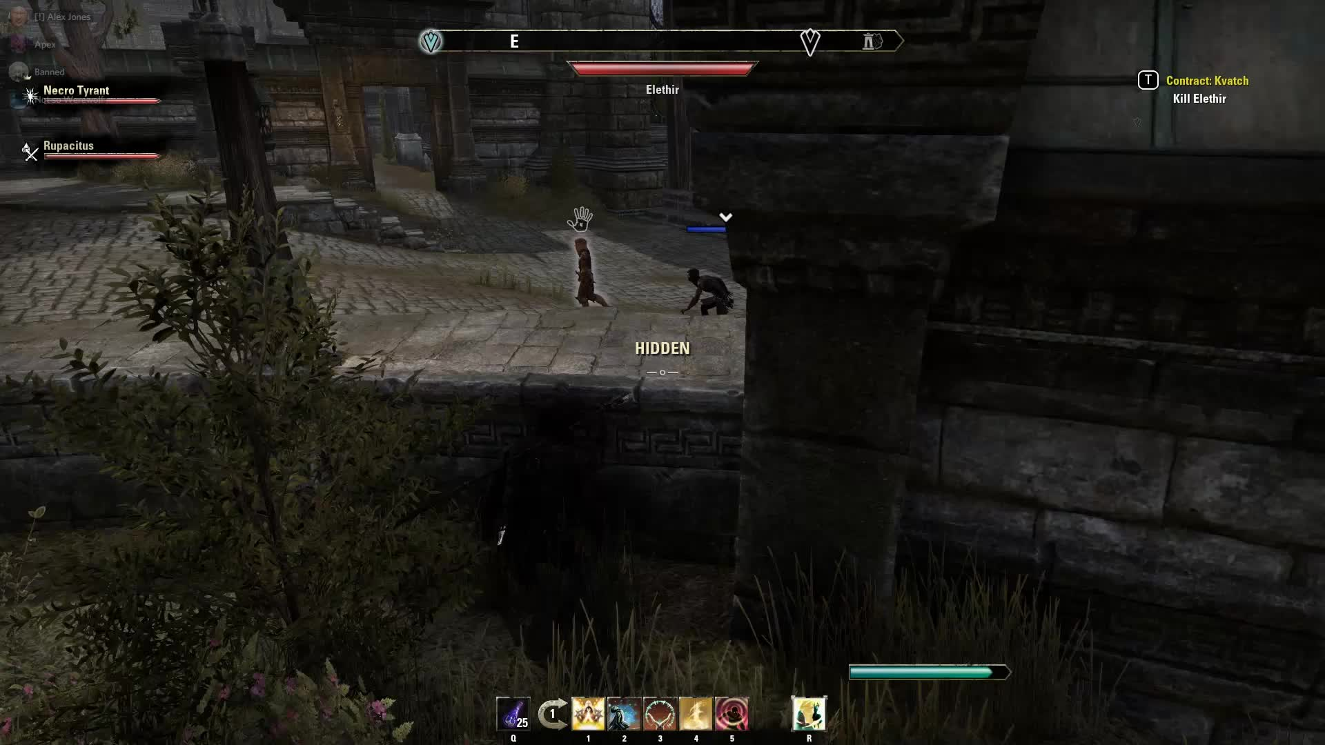 elderscrollsonline, ESO Dark brotherhood GIFs