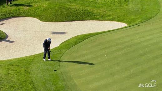 golf, golfing, sports, golf GIFs