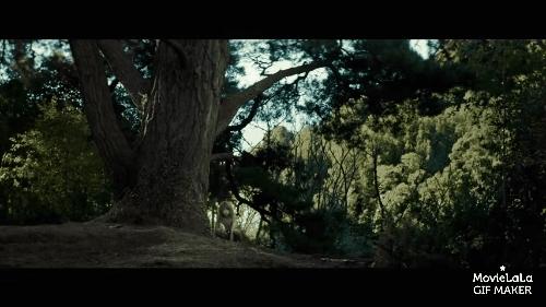 movies, nononono, videos, Pete's Dragon Trailer GIFs