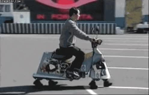 Watch and share Gracioso Moto Patas GIFs on Gfycat