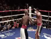 Watch Mayweather Pull Counter GIF by @mightyfighter on Gfycat. Discover more related GIFs on Gfycat
